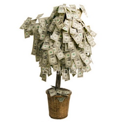 Google Money Tree - One of Many Scams